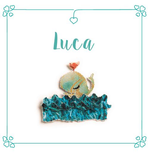 voorkant Walvisje Luca