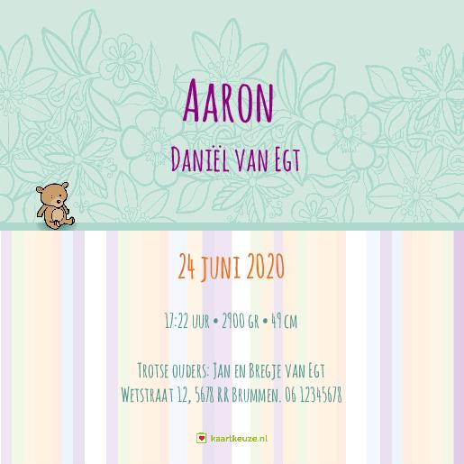 achterkant Geboortekaartje streepjes beertje Aaron
