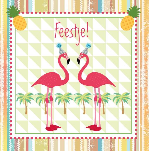 voorkant Uitnodiging flamingo