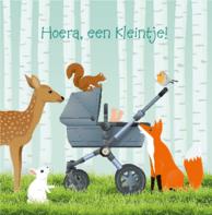 Geboorte kinderwagen bos