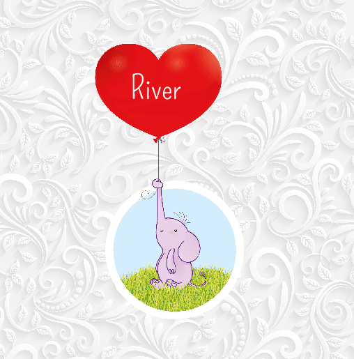 voorkant Olifantje ballon River