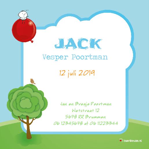 achterkant Geboortekaartje baby ballon Jack