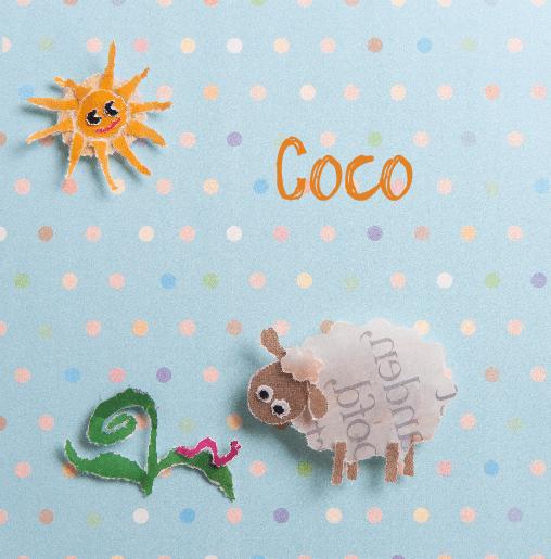 voorkant Schaapje Coco