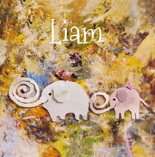 voorkant Adoptiekaartje olifantjes Liam