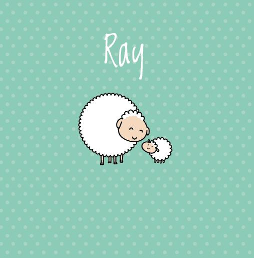 voorkant Schaapje Ray