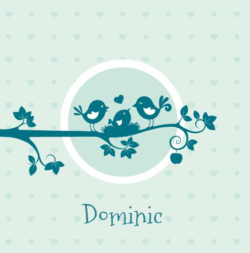 voorkant Vogeltjes Dominic