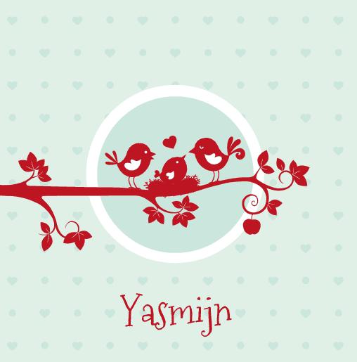 voorkant Rode vogeltjes Yasmijn